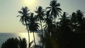 Bello tramonto di vista di oceano stock footage