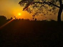 Bello tramonto giallo Fotografie Stock