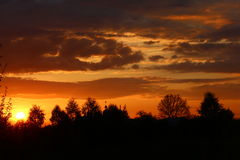 Bello tramonto nel giardino Immagini Stock Libere da Diritti