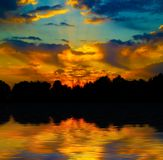 Bello tramonto nella foresta Immagini Stock