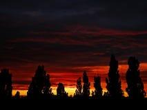 Bello tramonto rosso luminoso Fotografie Stock Libere da Diritti