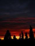 Bello tramonto rosso luminoso Immagine Stock