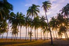 Bello tramonto sopra il mare del Vietnam, Mui Ne, Asia Fotografia Stock