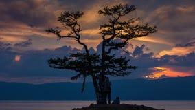 Bello tramonto sul lago Baikal, albero di desiderio, delle coppie e dei turisti, timelapse stock footage