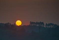 Bello tramonto sulla foresta Immagini Stock Libere da Diritti