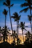Bello tramonto variopinto sull'isola tropicale di Dominicana fotografie stock libere da diritti
