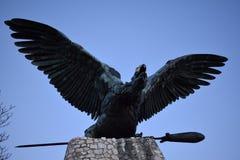 Bello uccello del ` di Turul del ` Immagine Stock Libera da Diritti