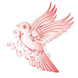 Bello uccello rosso con un modello Immagini Stock