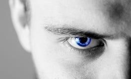 Bello uomo umano, tipo, occhio del fronte, macro, fine sul blu Immagine Stock Libera da Diritti