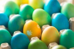Bello uovo luminoso con un'immagine nella cellula per Pasqua Fotografie Stock