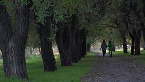 Bello vicolo nell'area del parco Passaggio di una coppia di ragazze vicino video d archivio