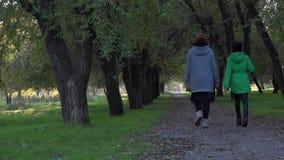 Bello vicolo nell'area del parco Passaggio di una coppia di ragazze vicino stock footage
