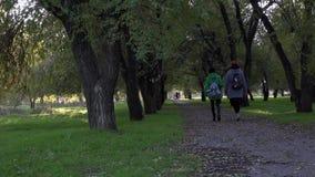 Bello vicolo nell'area del parco Passaggio di una coppia di ragazze vicino archivi video