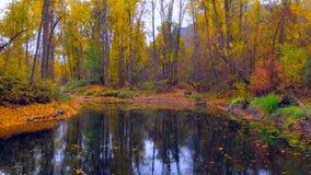 Bello Washington Autumn Nature Scenery - parco di lungomare, Leavenworth immagini stock libere da diritti