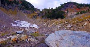 Bello Washington Autumn Nature Scenery - traccia gialla della collina dell'aster fotografie stock