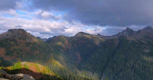 Bello Washington Autumn Nature Scenery - traccia gialla della collina dell'aster immagini stock libere da diritti