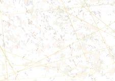 Bello wireframe dorato di modo sopra marmo naturale d'annata b Fotografie Stock