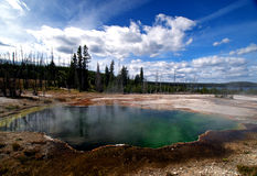 Bello Yellowstone che cuoce a vapore le sorgenti calde immagini stock