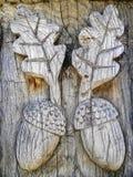 Bellotas de madera foto de archivo