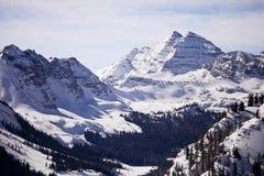 Bells marron en hiver Images stock