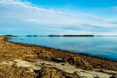 Bellsdownes Islands from Shallow Bay, Gros Morne, National Park, Newfoundland, Canada royalty free stock images