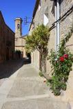 Belltall Tarragona Arkivfoto