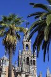 Belltower de cathédrale de Giralda de La en Séville Photo libre de droits