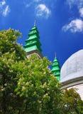 Belltowers собора и дерево chesnut в цветении Стоковое Фото