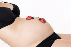 Belly of gifts. A belly of a pregnant woman Royalty Free Stock Images