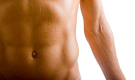 Belly naked male body. (an athlete Royalty Free Stock Photo