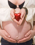 Belly pregnant woman with heart in hands Royalty Free Stock Images