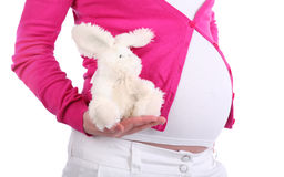 Belly of pregnant woman holding toy rabbit. With unreal design isolated on white background royalty free illustration