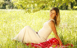 Belly of a pregnant woman on nature stock photography