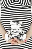 Belly of pregnant woman in stripped dress with zebra toy Stock Photography