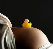 Bellybutton with plastic duck Royalty Free Stock Photos