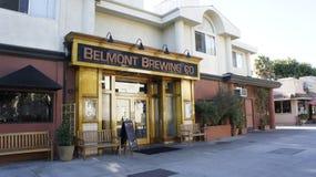 Belmont brassant la Co Image libre de droits