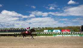 Belmont Park Race Track Royalty Free Stock Image