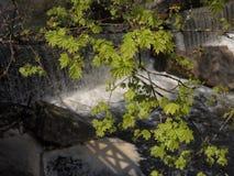 Belmontas Waterfalls (Vilnius, Lithuania)