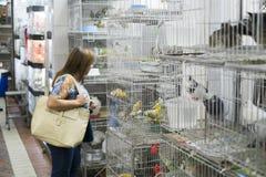 BELO HORIZONTE BRASILIEN - JULI 28: Folk som ser caged fåglar Arkivfoton