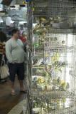 BELO HORIZONTE BRASILIEN - JULI 28: Folk som ser caged fåglar Royaltyfri Bild