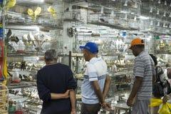 BELO HORIZONTE, BRASILIEN - 28. JULI: Leute, die eingesperrte Vögel betrachten Lizenzfreie Stockfotos