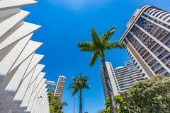 Belo Horizonte, Minas Gerais, Brasil Vista do parque municipal imagem de stock royalty free