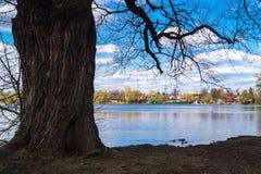 Beloe湖海岸在莫斯科区Novokosino 库存图片