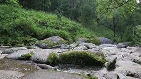 Belokurikha山河在阿尔泰边疆区。 影视素材