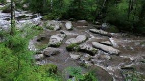 Belokurikha mountain river in Altai Krai. Stock Image