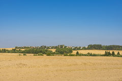 Belorussian meadows. In the late summer Stock Photography