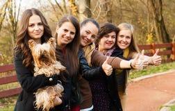 Beloved dog Royalty Free Stock Photo