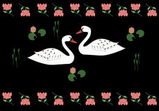 Beloved swans Royalty Free Stock Images