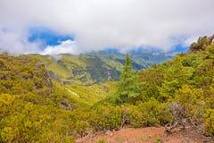 Below mountain peak Pico Ruivo, Madeira Royalty Free Stock Photos