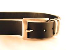 Belt. Black belt Stock Images